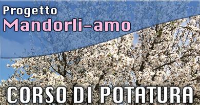 Progetto Mandorli-amo
